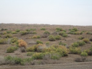 Merv in the Turkmenistan desert