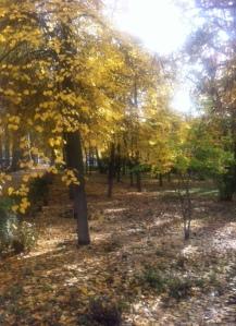 AutumnBishkek