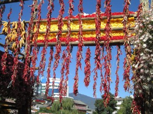 Peppers protecting Lijiang