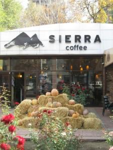 Sierra Coffee in Bishkek
