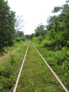 The bamboo railway near Battambang
